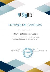 Сертификат SkyDNS